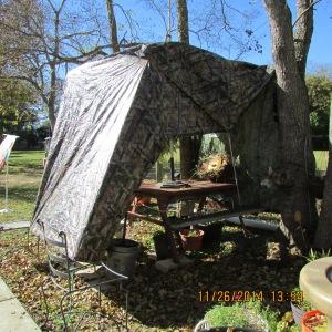 Tarp shelter for perennial plants