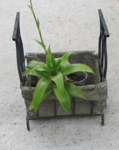 Magazine rack planter (1)