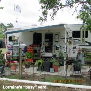 "Lorraine's ""busy"" yard"