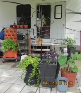 Garden Tower under cover