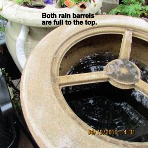 Rain barrels are full