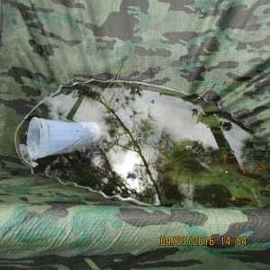 Pocket of water on tarp
