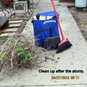 Clean up after the storm