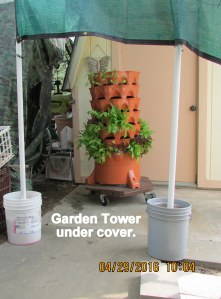 Garden Tower under cover