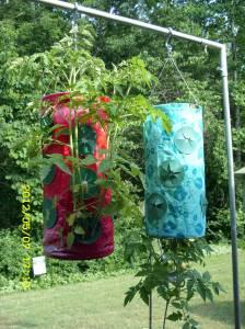 Tomato planters