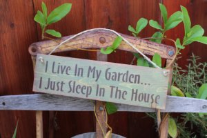 I live in my garden (poster)