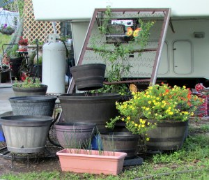 Planters in front of trailer