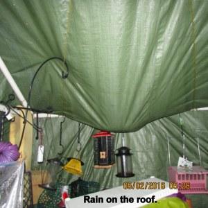 Rain on tarp roof