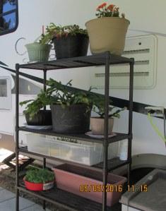 Shelf with heavy planters