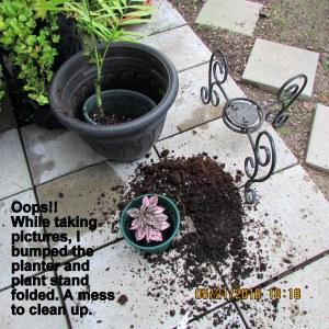 Overturned planter