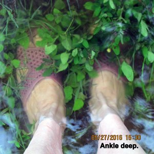 Ankle deep