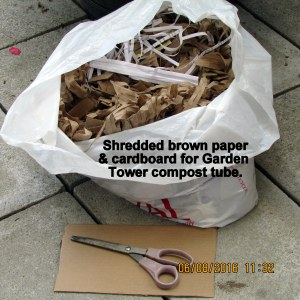 Shredded paper and cardboard