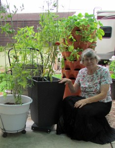 Lorraine with tomato plants