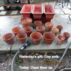 Gift of clay pots