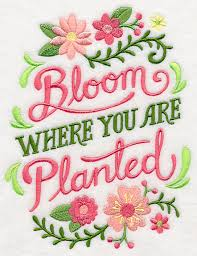 Bloom where you are planted in embroidery (2)