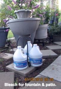 Bleach for fountain and patio