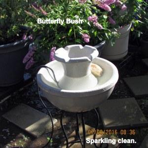 Sparking clean
