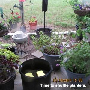 Time to shuffle planters