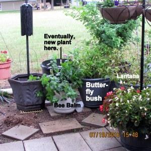 Planters rearranged