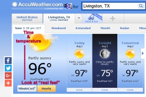 Screen capture of temperature on Internet