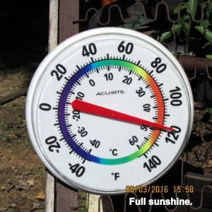 Temperature in full sunshine