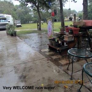 Welcome rain water
