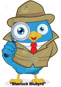 bluebird-with-magnifying-glass-bluebird-detective