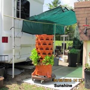 Garden Tower in sunshine