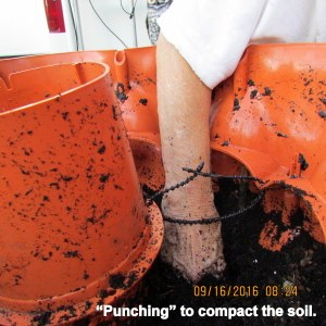 Punching to settle the soil