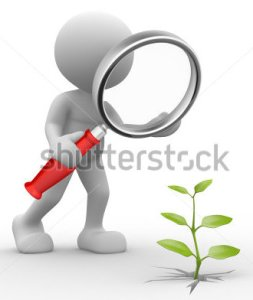Magnifying glass with white stick figure and green plant