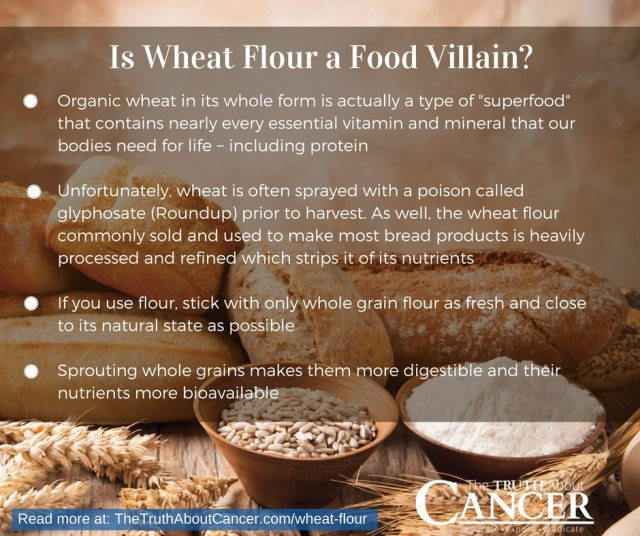 wheat-flour-poster