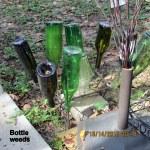Bottle weeds