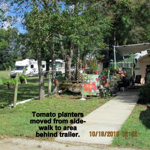 Tomato planters moved