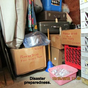 Disaster preparedness (1)