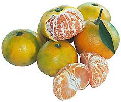 satsuma-citrus-fruit-and-segments