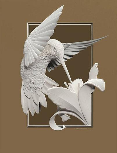 hummingbird-by-calvin-nicholls
