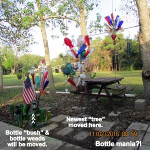 Bottle mania explained
