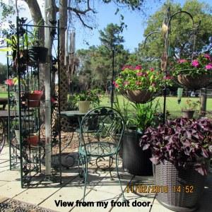 View from my door
