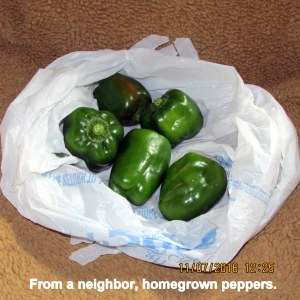 Neighbor gave me peppers