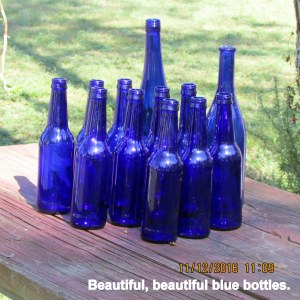 Beautiful blue bottles