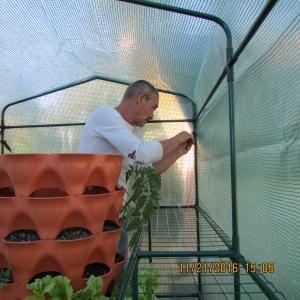 Roger inside securing cover to framework