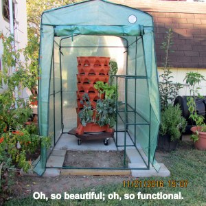 Greenhouse completely assembled