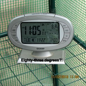 Temperature inside greenhouse