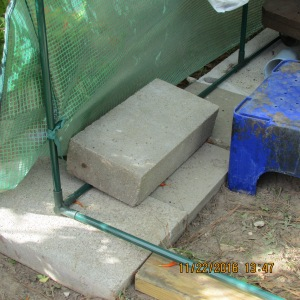Cement block on west side of greenhouse