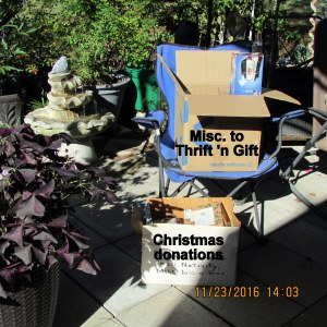 Boxes for Thrift 'n Gift shop