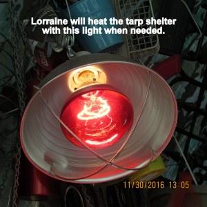 Heat lamp close up