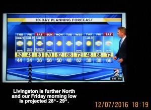 Ten day weather