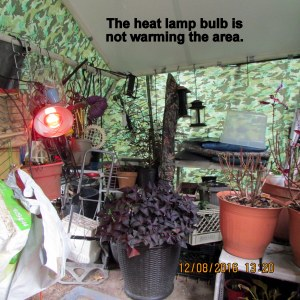 Heat lamp is not warming the tarp shelter