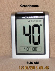 Temperature in greenhouse at six-forty