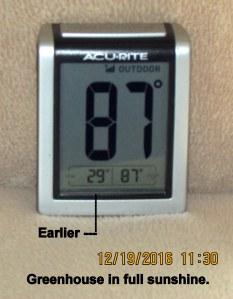 Temperature in greenhouse